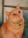 Yellow Tabby Cat Painting